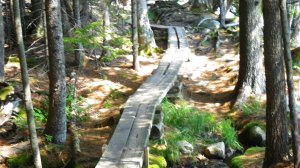 Jul Aug 2015 Maine 071